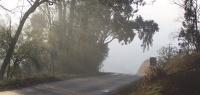 Лишенный прав водитель погиб в ДТП в Нижегородской области